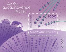 2018 Az év gyógynövénye - Valódi levendula - Medicinal plant of the year 2018: true lavender